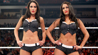 Bella Twins Fired