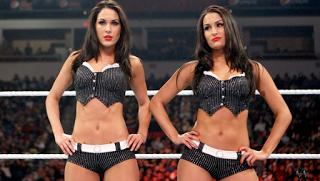 Bella Twins Fired
