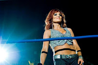 Christy Hemme Austin Airies Incident