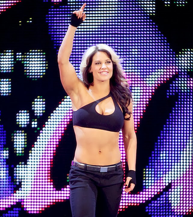 WWE Diva Kaitlyn Leaves WWE