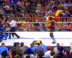 Undertaker Beats Hogan