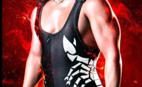 WWE Games Sting
